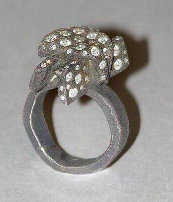 Karl Fritsch, ring, 2002. Foto met dank aan SMS©