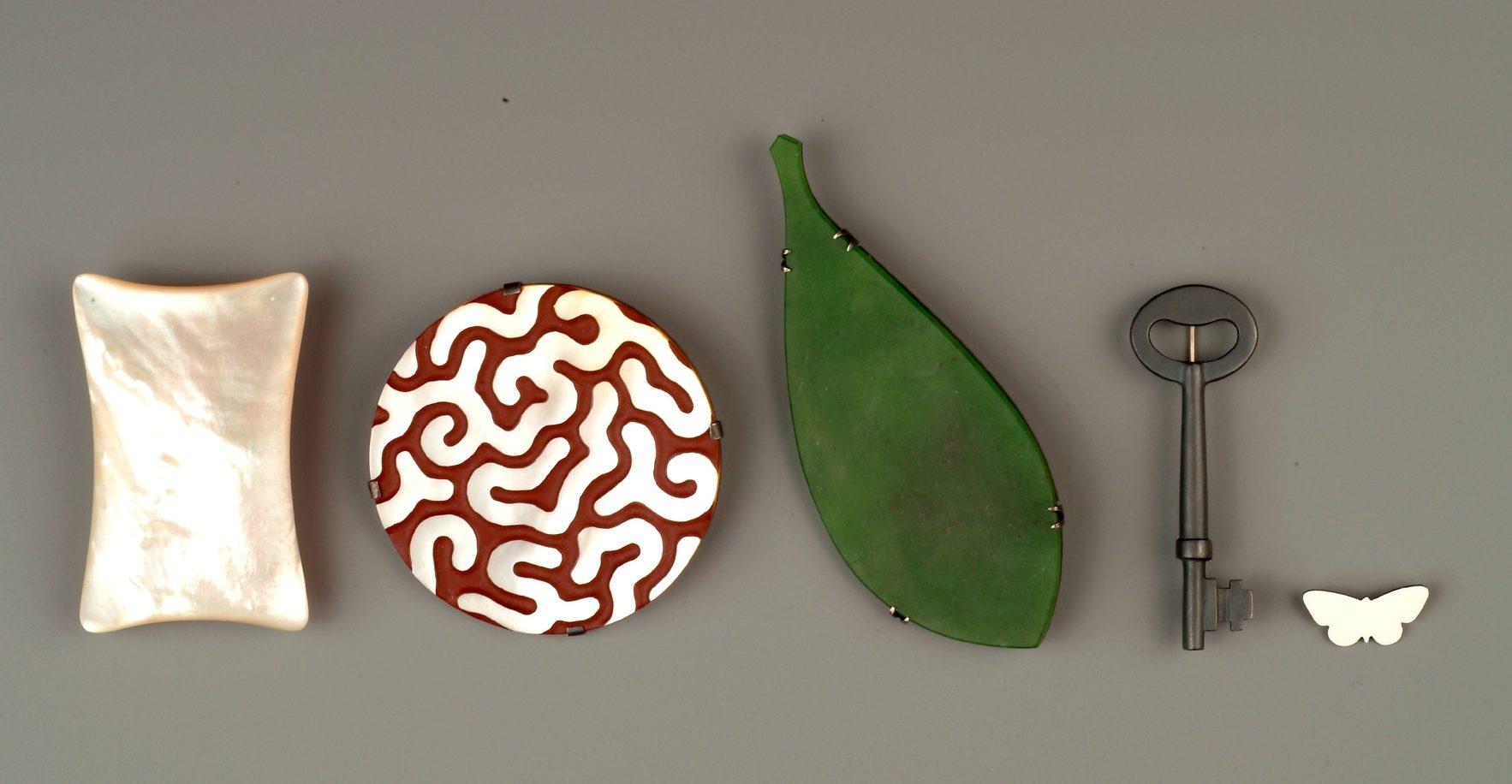 Warwick Freeman, broches: Pillow, 1992, Carved Brain, 2001, Karuka Leaf, 1997, Key, 1998, White Buterfly, 1999. Foto met dank aan Stichting Françoise van den Bosch©