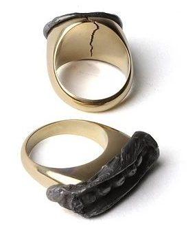 Christopher Thompson Royds, Seal Rings : 16g & 12g, ringen,2010. Foto met dank aan Christopher Thompson Royds©