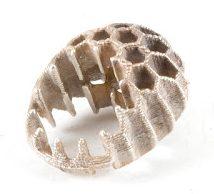 Héctor Lasso, Honeycomb, ring, circa 2013. Foto met dank aan Héctor Lasso©