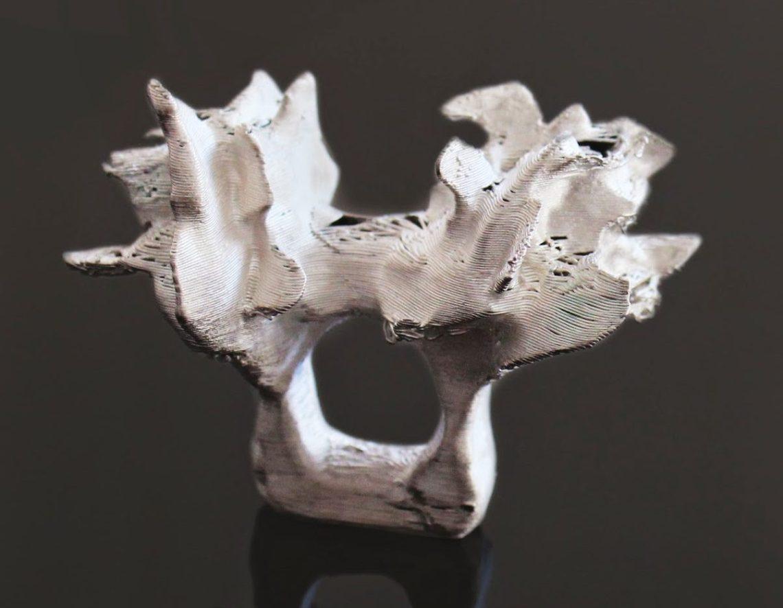 Héctor Lasso, Baobab, ring, 2012. Foto met dank aan Héctor Lasso, Elvira Golombosi©