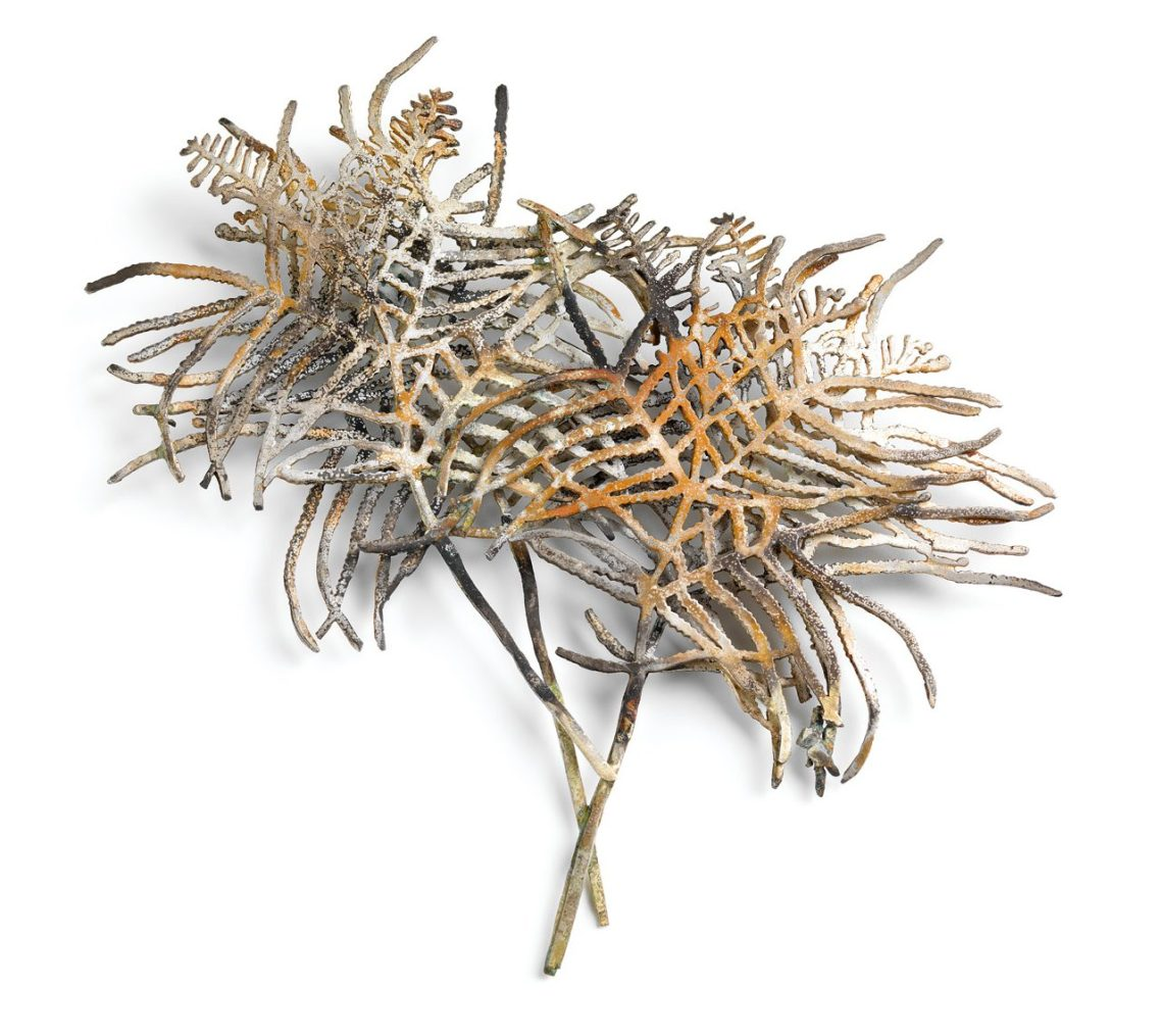 Marian Hosking, Coral fern, broche, 2008. Collectie Daalder. Foto met dank aan Art Gallery of South Australia, Grant Hancock©