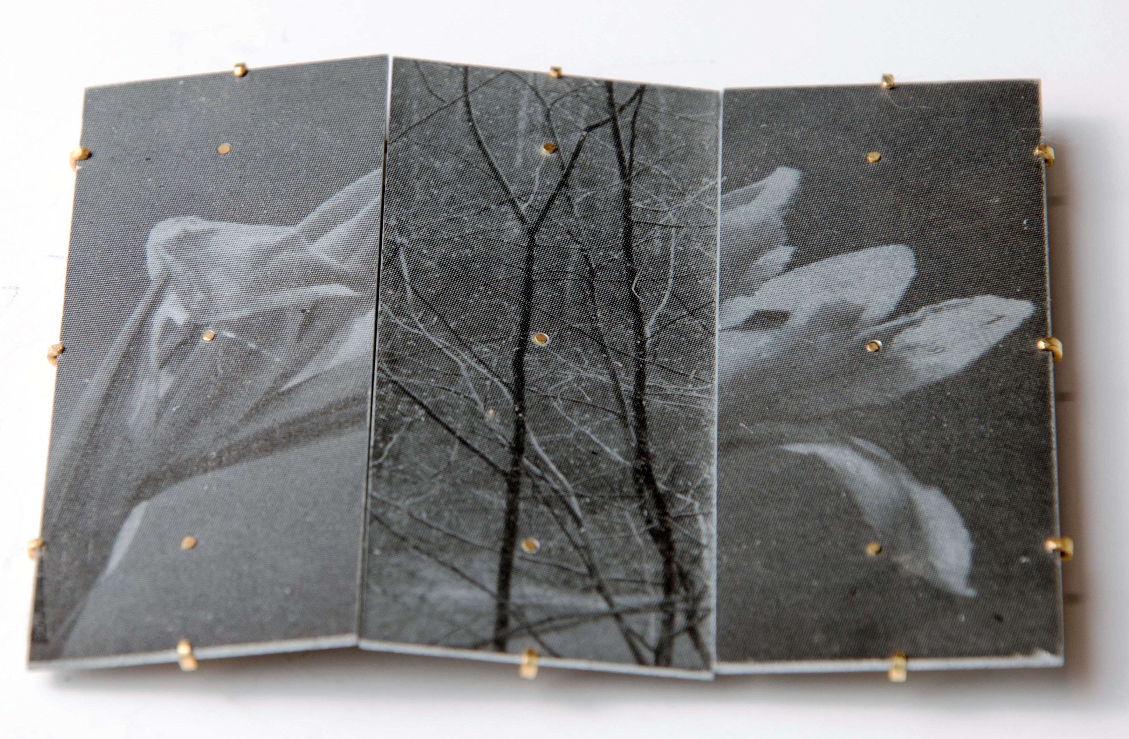 Bettina Speckner, broche, 2005. Collectie CODA, C004821. Foto met dank aan CODA©
