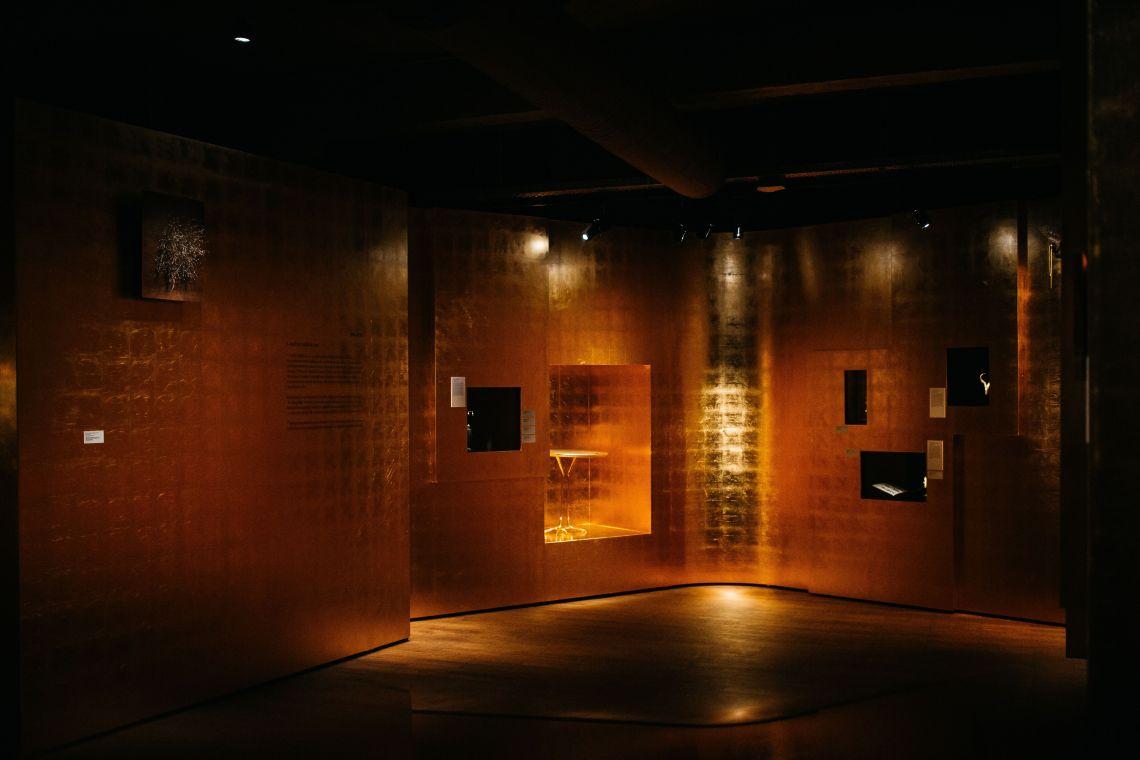 Palazzo, Wonderkamer II, DIVA. Foto met dank aan Wouters & Hendrix©