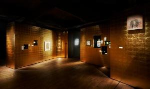 Palazzo, Wonderkamer II, DIVA, 2019. Foto met dank aan DIVA©