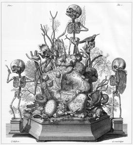 Memento mori, gravure door Cornelis Huyberts uit het Anatomieboek Opera Omnia van Frederik Ruysch, 1737. Het bovenste skeletje heeft kralensnoeren van nier- en galsteentjes in de hand. Foto met dank aan Wikimedia Commons, publiek domein